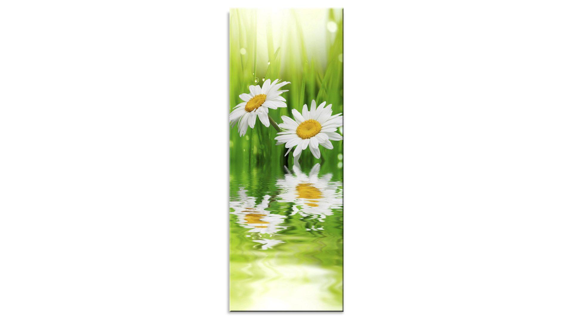 Mobel Janz Gmbh Raume Esszimmer Glasbild Glasbild Ganseblumchen